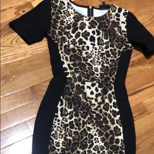 Asos Warehouse Leopard Dress